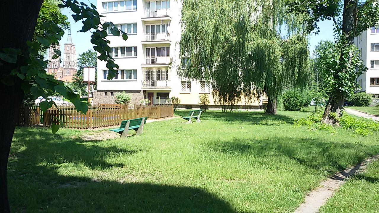 ostatni-trawnik_5
